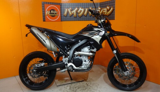 wr250x-normal-2007-1