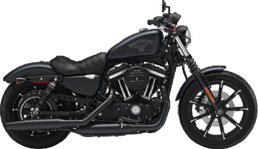 ~1000cc【スポーツスター/旧車】のバイク